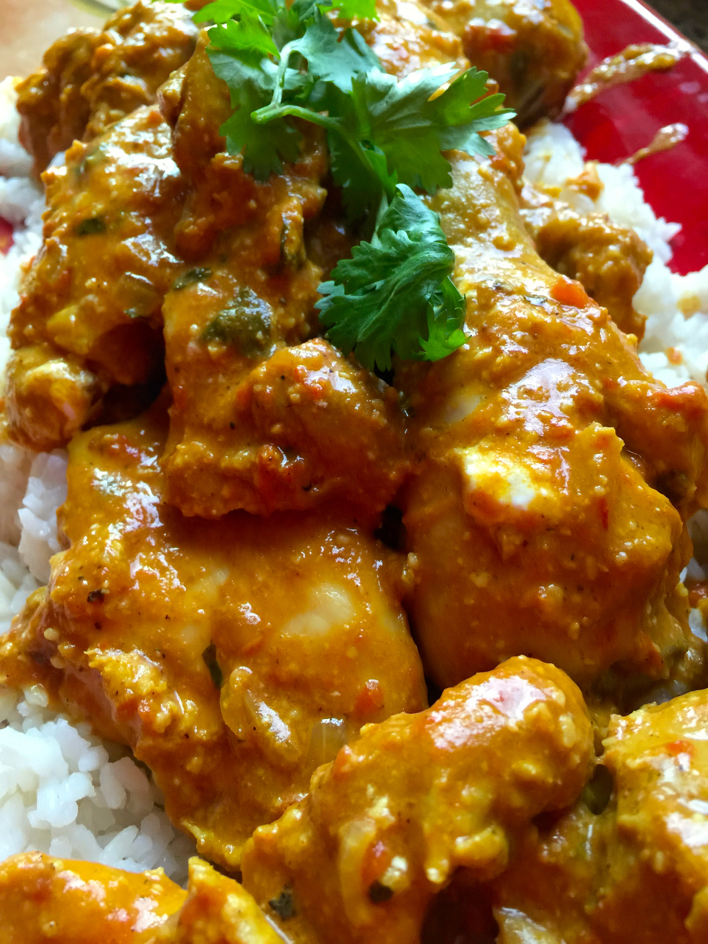 Warm and Spicy Chicken Curry in a Hurry